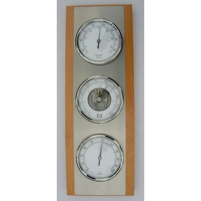 Blank/metal weerstation bth086.582